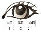 瞳の黄金比率に近づく設計