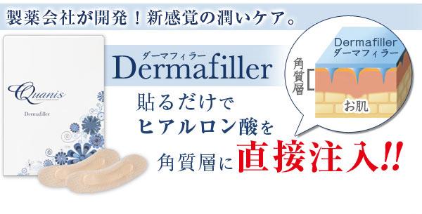 Quanis(クオニス)Dermafiller ダーマフィラー