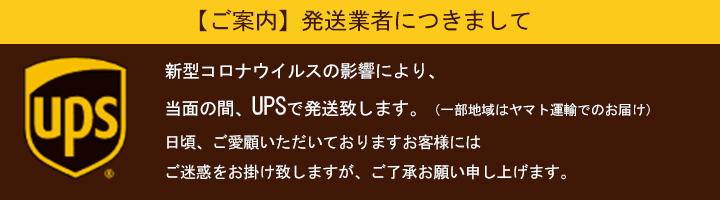 シンガポールUPS発送について