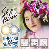 SEA BLINK (シーブリンク) 1枚入×2箱セット | 山中美智子 | カラコン | 即日出荷(最短あす届く)